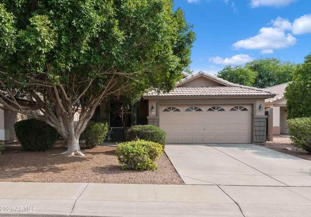 177 W Shannon Street, Gilbert, AZ 85233 (MLS #6268704) :: Keller Williams Realty Phoenix