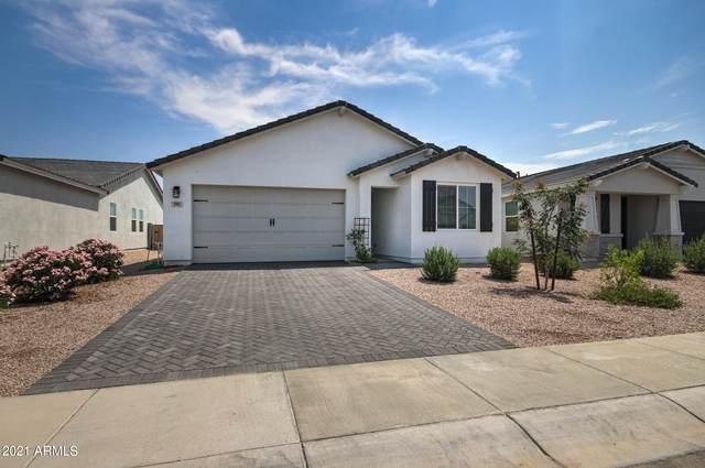 581 E Hazelnut Lane, San Tan Valley, AZ 85140 (MLS #6268714) :: The Copa Team | The Maricopa Real Estate Company