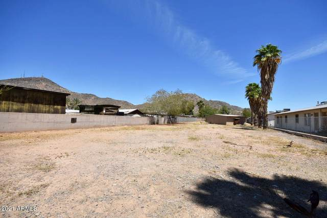 10644 N 15TH Avenue, Phoenix, AZ 85029 (MLS #6268735) :: Yost Realty Group at RE/MAX Casa Grande
