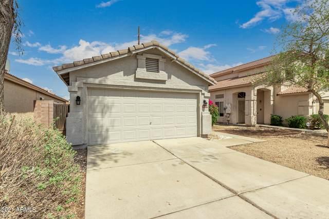 18229 N 11TH Drive, Phoenix, AZ 85023 (MLS #6268744) :: Yost Realty Group at RE/MAX Casa Grande
