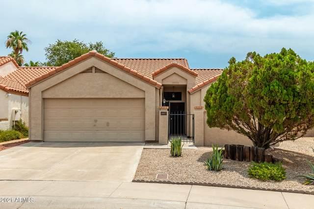 18657 N 77TH Drive, Glendale, AZ 85308 (MLS #6268754) :: Yost Realty Group at RE/MAX Casa Grande