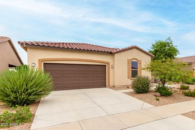 2655 E Questa Trail, Casa Grande, AZ 85194 (MLS #6268757) :: My Home Group