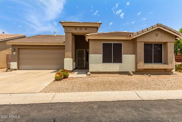 3309 N St Elias Street, Mesa, AZ 85215 (MLS #6268762) :: Yost Realty Group at RE/MAX Casa Grande