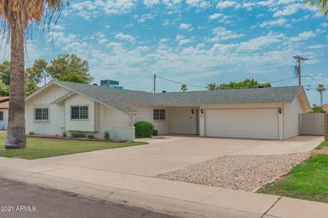 8341 E Mackenzie Drive, Scottsdale, AZ 85251 (MLS #6268790) :: The Laughton Team