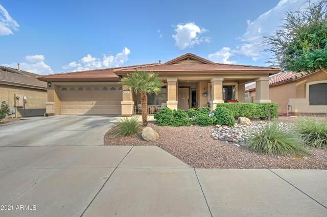 5338 N Ormondo Way, Litchfield Park, AZ 85340 (MLS #6268797) :: West Desert Group | HomeSmart
