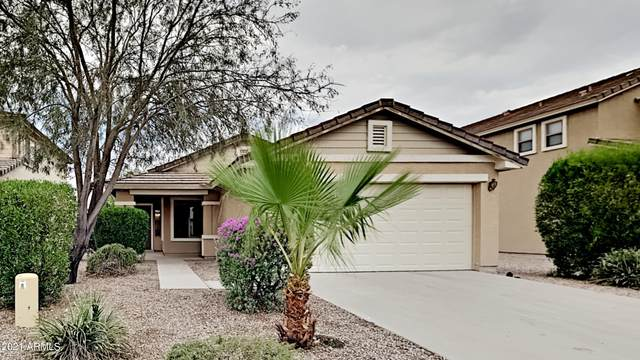 35080 N Happy Jack Drive, Queen Creek, AZ 85142 (MLS #6268821) :: Yost Realty Group at RE/MAX Casa Grande