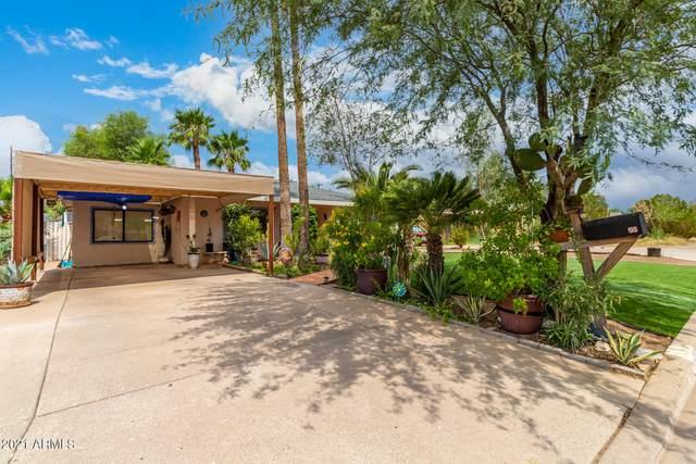 6628 N 19TH Street, Phoenix, AZ 85016 (MLS #6268827) :: Yost Realty Group at RE/MAX Casa Grande