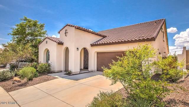 31092 N 138TH Avenue, Peoria, AZ 85383 (MLS #6268851) :: Howe Realty