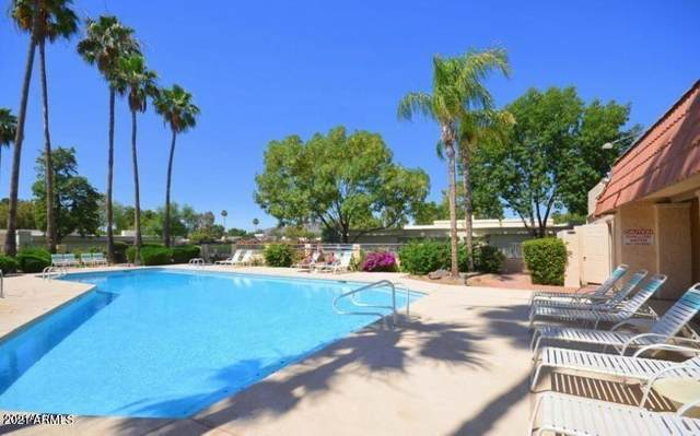 7849 E Via Costa, Scottsdale, AZ 85258 (MLS #6268878) :: The Carin Nguyen Team