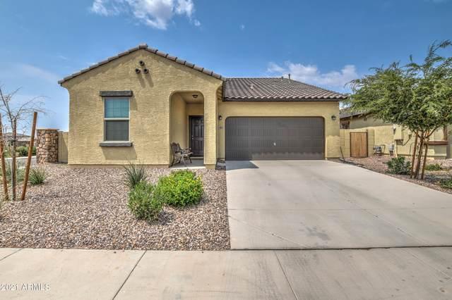 462 W Powell Drive, San Tan Valley, AZ 85140 (MLS #6268909) :: The Copa Team | The Maricopa Real Estate Company