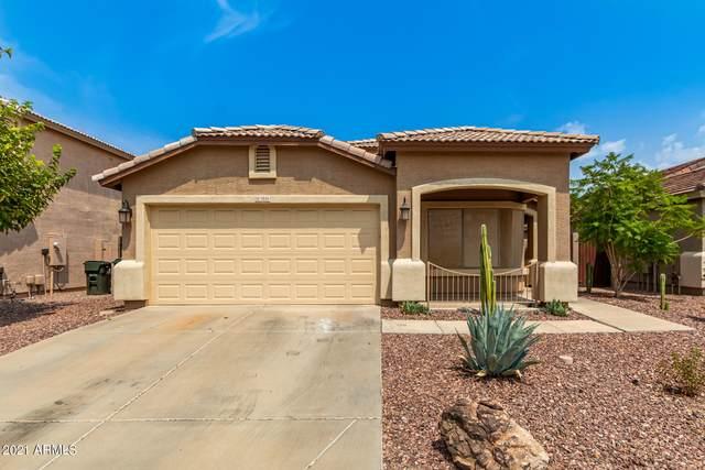 7035 S 43RD Drive, Laveen, AZ 85339 (MLS #6268932) :: Yost Realty Group at RE/MAX Casa Grande