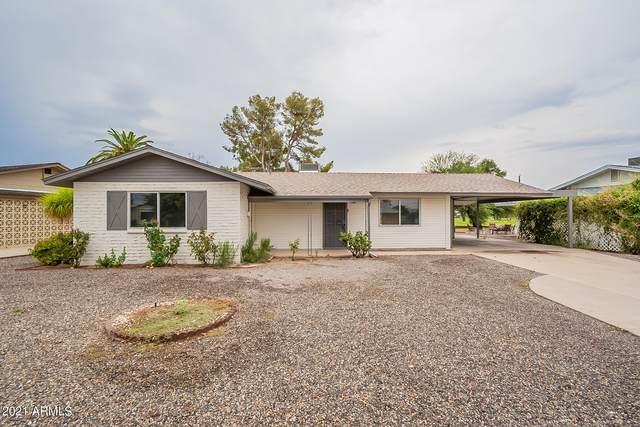 10409 W Snead Drive, Sun City, AZ 85351 (MLS #6268942) :: Yost Realty Group at RE/MAX Casa Grande