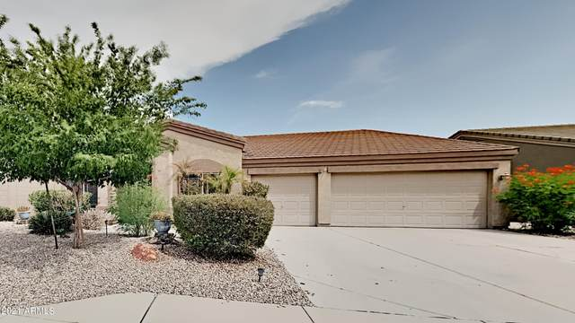 739 S 105TH Place, Mesa, AZ 85208 (MLS #6268944) :: Openshaw Real Estate Group in partnership with The Jesse Herfel Real Estate Group