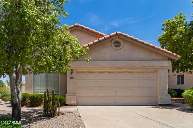 13775 N 103RD Way, Scottsdale, AZ 85260 (MLS #6268990) :: Executive Realty Advisors