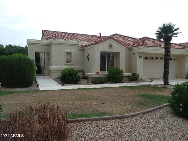 14011 W Yosemite Court, Sun City West, AZ 85375 (MLS #6268999) :: Openshaw Real Estate Group in partnership with The Jesse Herfel Real Estate Group
