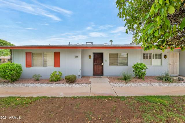14040 N Newcastle Drive, Sun City, AZ 85351 (MLS #6269026) :: Openshaw Real Estate Group in partnership with The Jesse Herfel Real Estate Group
