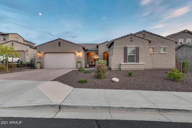 10225 W Saddlehorn Road, Peoria, AZ 85383 (MLS #6269031) :: Keller Williams Realty Phoenix