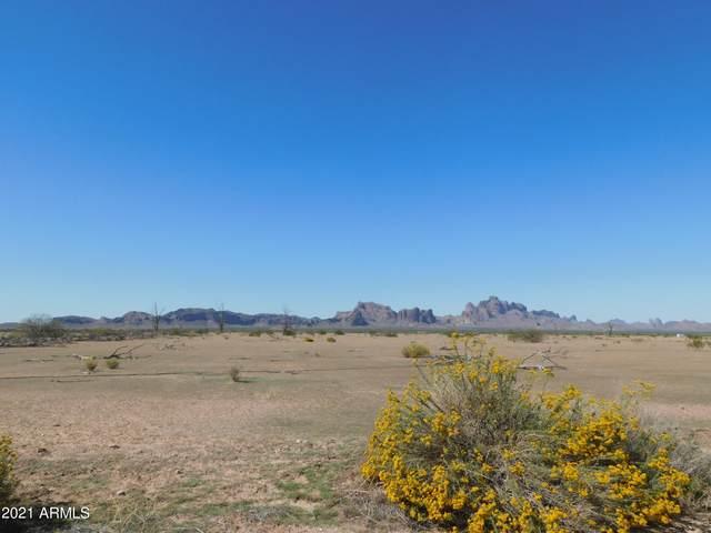 xxx S 538th Avenue, Tonopah, AZ 85354 (MLS #6269135) :: Yost Realty Group at RE/MAX Casa Grande