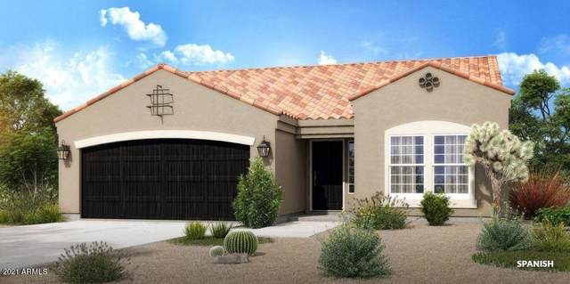 6449 W Palomino Way, Coolidge, AZ 85128 (MLS #6269159) :: Klaus Team Real Estate Solutions