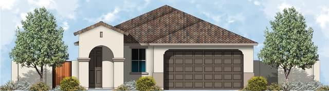 1134 E Brookwood Drive, Casa Grande, AZ 85122 (MLS #6269223) :: My Home Group