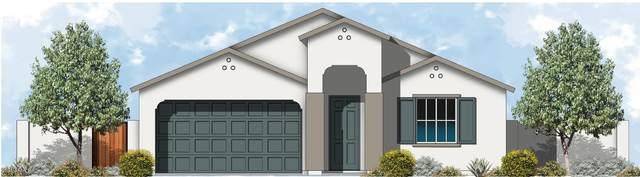 1138 E Brookwood Drive, Casa Grande, AZ 85122 (MLS #6269230) :: My Home Group