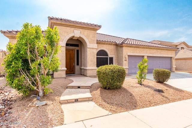 16411 S 16TH Avenue, Phoenix, AZ 85045 (MLS #6269246) :: Keller Williams Realty Phoenix