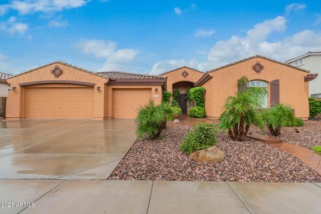 1819 E Kaibab Drive, Chandler, AZ 85249 (MLS #6269265) :: Executive Realty Advisors