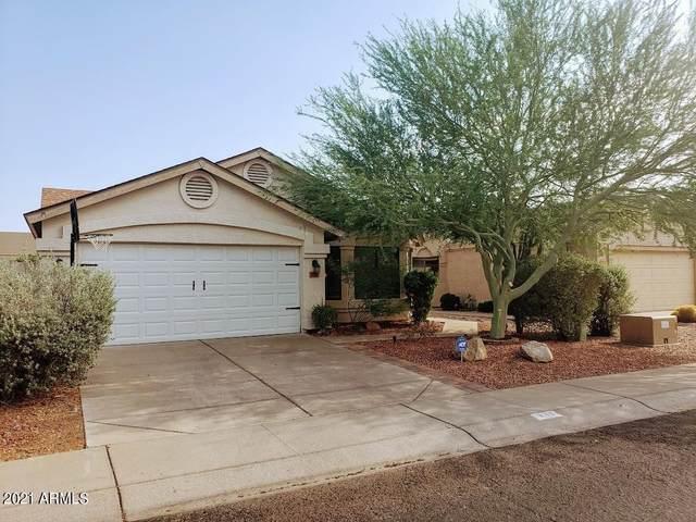 817 E Rosemonte Drive, Phoenix, AZ 85024 (MLS #6269296) :: West Desert Group | HomeSmart
