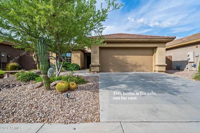 1814 W Eastman Drive, Anthem, AZ 85086 (MLS #6269300) :: Keller Williams Realty Phoenix