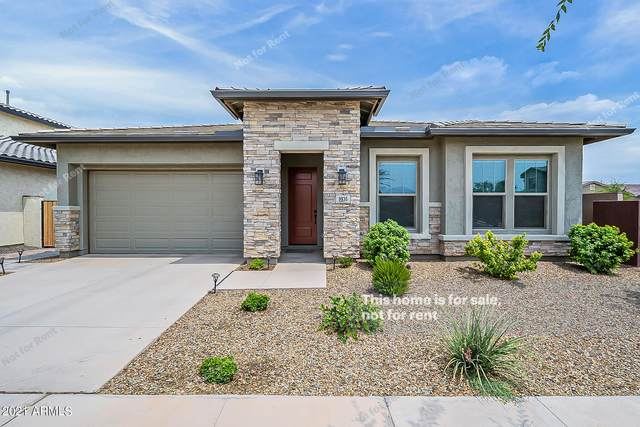 9936 E Tripoli Avenue, Mesa, AZ 85212 (MLS #6269321) :: Yost Realty Group at RE/MAX Casa Grande
