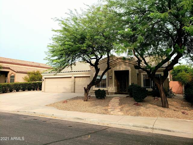709 S Canfield, Mesa, AZ 85208 (MLS #6269343) :: Power Realty Group Model Home Center