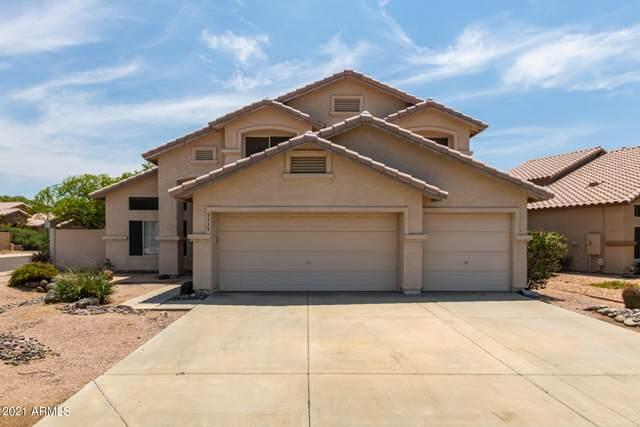 5335 W Kerry Lane, Glendale, AZ 85308 (MLS #6269351) :: Yost Realty Group at RE/MAX Casa Grande