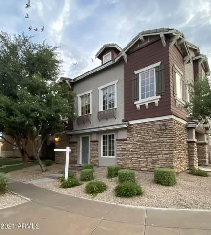 4249 E Jasper Drive, Gilbert, AZ 85296 (MLS #6269359) :: Executive Realty Advisors