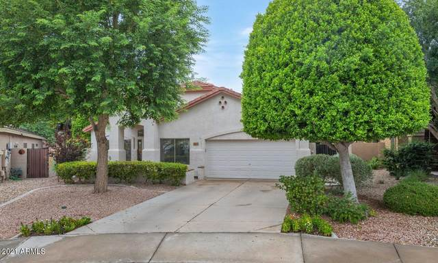 25402 N 68TH Drive, Peoria, AZ 85383 (MLS #6269373) :: Executive Realty Advisors