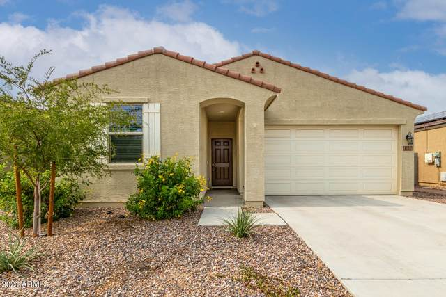 4126 W Coneflower Lane, Queen Creek, AZ 85142 (MLS #6269386) :: Yost Realty Group at RE/MAX Casa Grande