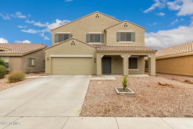 23822 W Chambers Street, Buckeye, AZ 85326 (MLS #6269387) :: Dijkstra & Co.