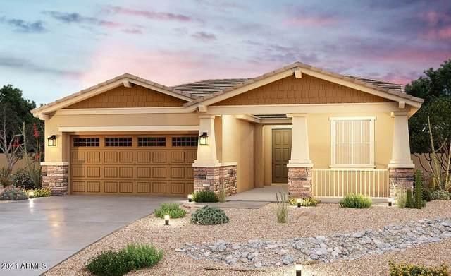 40890 W Haley Drive, Maricopa, AZ 85138 (MLS #6269391) :: Yost Realty Group at RE/MAX Casa Grande