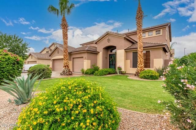 978 E Carla Vista Drive, Gilbert, AZ 85295 (MLS #6269406) :: Dijkstra & Co.