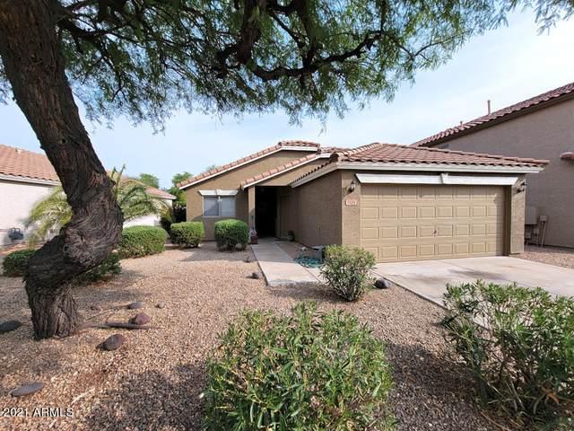 809 E Potter Drive, Phoenix, AZ 85024 (MLS #6269419) :: The Dobbins Team