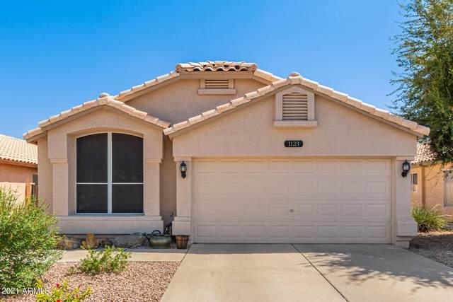 1123 W Sparrow Drive, Chandler, AZ 85286 (MLS #6269421) :: Kepple Real Estate Group