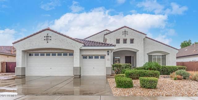 1207 E Tonto Drive, Chandler, AZ 85249 (MLS #6269557) :: The Laughton Team
