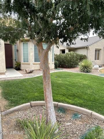 10486 E Wallflower Lane, Florence, AZ 85132 (MLS #6269567) :: Yost Realty Group at RE/MAX Casa Grande