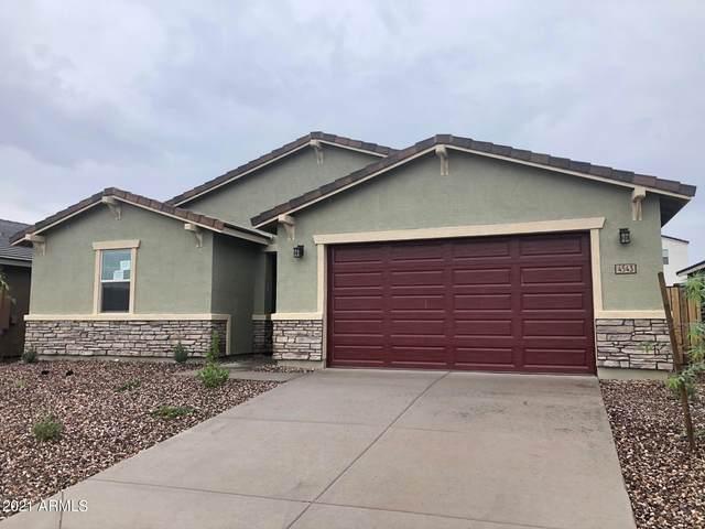 4543 W Bush Bean Way, San Tan Valley, AZ 85142 (MLS #6269594) :: Dave Fernandez Team   HomeSmart
