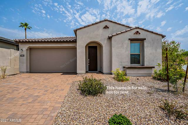 828 E Amberwood Drive, Phoenix, AZ 85048 (MLS #6269603) :: The Newman Team