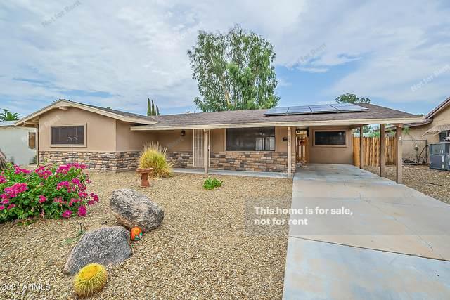 6924 E Exmoor Drive, Mesa, AZ 85208 (MLS #6269608) :: Dijkstra & Co.