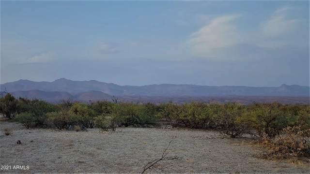 10914147-2 N Black Rock Road, Fort Thomas, AZ 85536 (MLS #6269634) :: Keller Williams Realty Phoenix