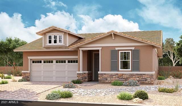 562 E Angel Drive, Chandler, AZ 85249 (MLS #6269650) :: Dave Fernandez Team | HomeSmart