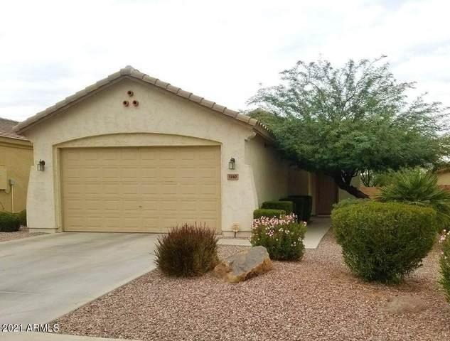 3260 W Dancer Lane, Queen Creek, AZ 85142 (MLS #6269661) :: Yost Realty Group at RE/MAX Casa Grande