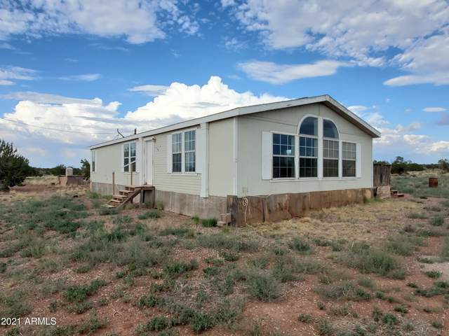 181 River Springs Ranch, St Johns, AZ 85936 (MLS #6269684) :: The Newman Team