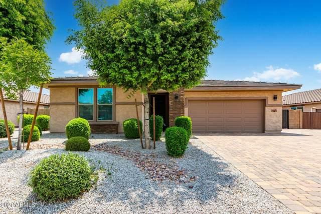 18247 W Montecito Avenue, Goodyear, AZ 85395 (MLS #6269686) :: Balboa Realty